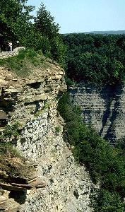 [Letchworth Gorge]
